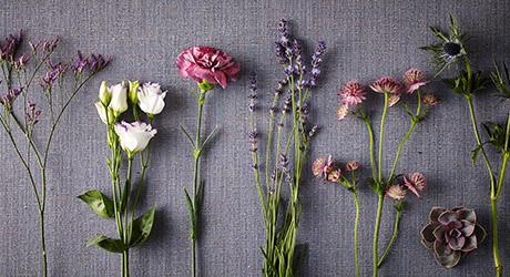 flowerposies