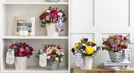 Mother's Day Flowerbaskets and Flowerpails