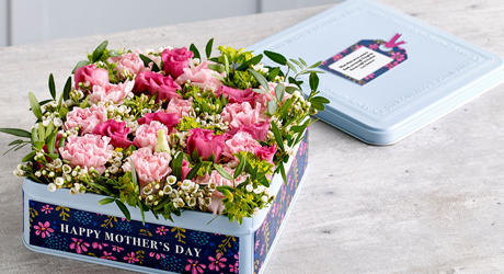 Mother's Day Gift Plants