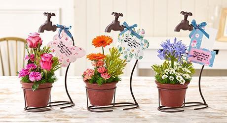 Flowertaps