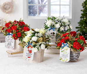 Christmas Flowerbaskets & Flowerpails