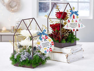 Christmas Terrariums