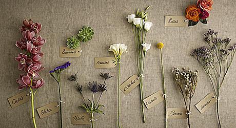 santini flowercards