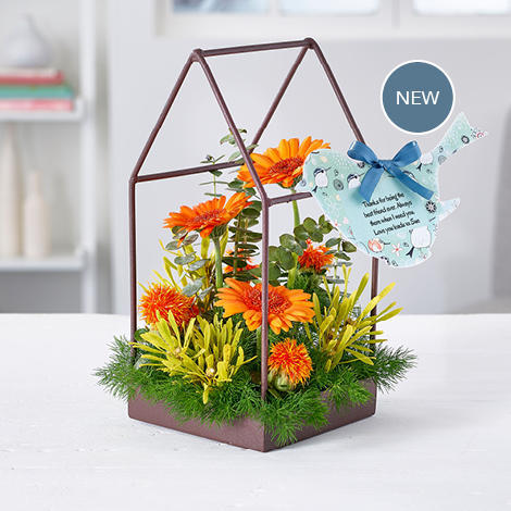 Large_carousel-new-products-20189