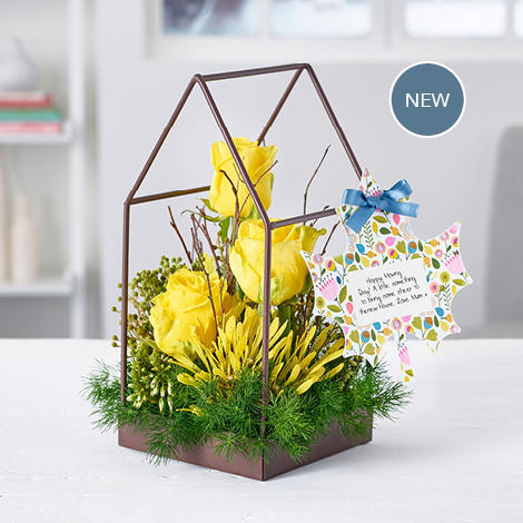 Large_carousel-new-products-201810