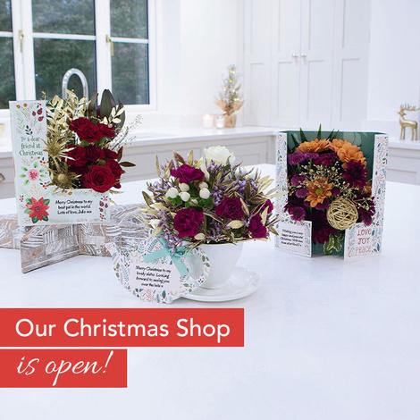 Large_fc-christmas-shop1.1__open