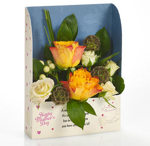 Product_tile_3col_fr_508113_mothers_day