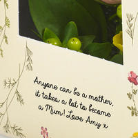 Mother's Roses