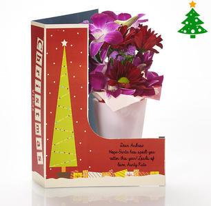 Product_tile_3col_yl50350-christmas-orchid-posey-christmas