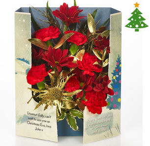 Product_tile_3col_fg_727082_red_carnation_-gatefold_christmas-web