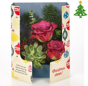 Product_tile_3col_fg_730211_plum_rose_gatefold_christmas-web