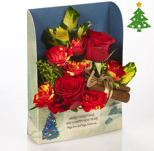 Product_tile_3col_fr_526086_red_rose_frame_christmas-web