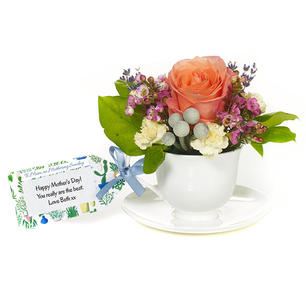 Product_tile_3col_treat-mum-to-tea-web
