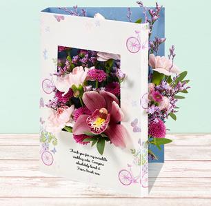 Product_tile_3col_fw846256-daisy-garden-web