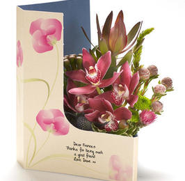 Precious Orchid