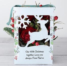Rosy Reindeer