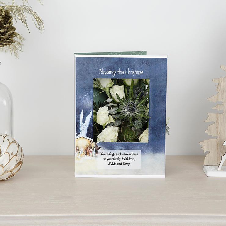 White Christmas Rose