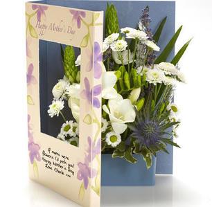 Product_tile_3col_073a_viva_la_violet_mothers_day_664