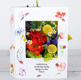 Ladybird Lane