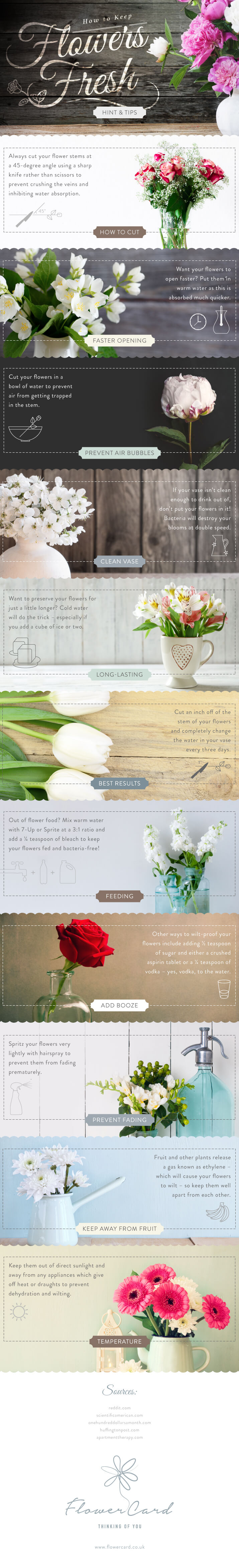 Wedding Flowers How To Keep Fresh : Tips to keep your flowers fresh for longer