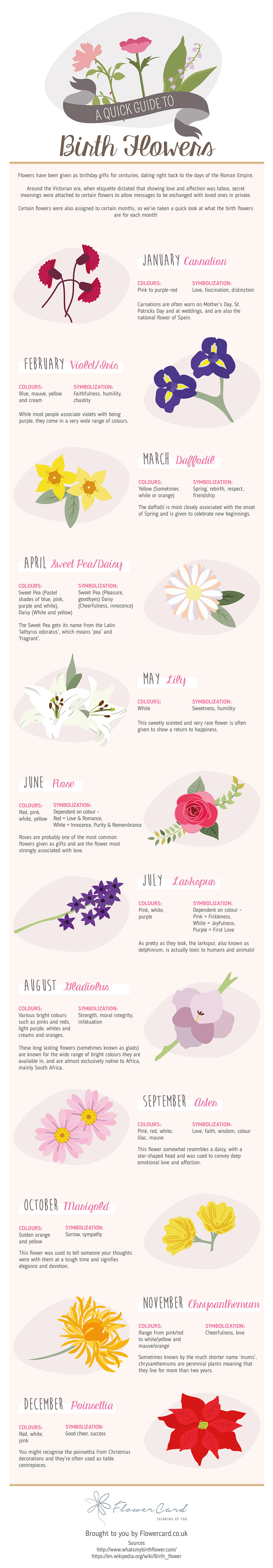 A Quick Guide To Birth Flowers Infographic Flowercard Thinking