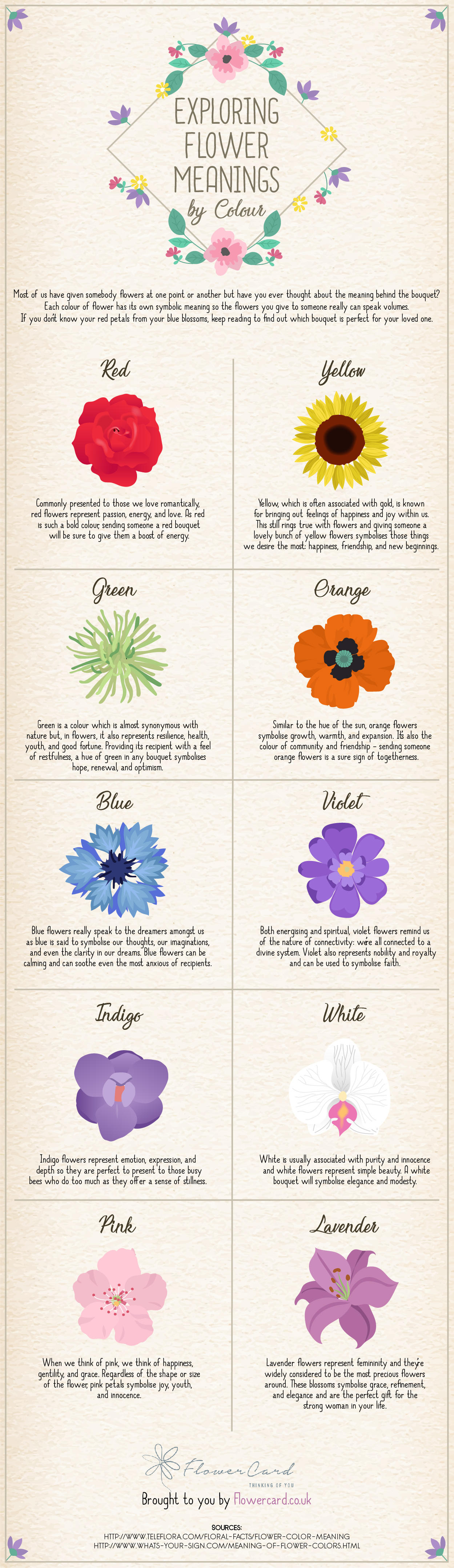 Exploring Flower Meanings By Colour [Infographic] — Flowercard ...